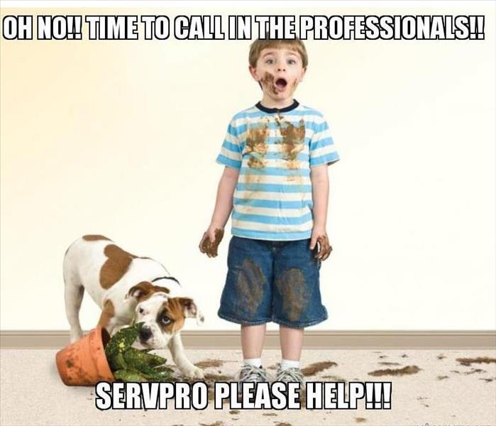 Cleaning Carpet Cleaning Tips from SERVPRO