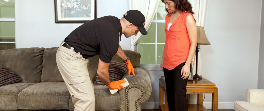 Albemarle, NC carpet upholstery cleaning